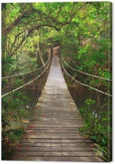 Leinwandbild Brücke zum Dschungel, Khao Yai Nationalpark, Thailand