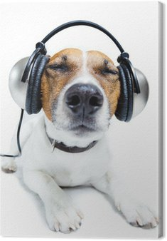Leinwandbild Dog Musik hören