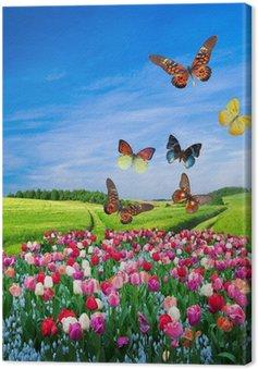Leinwandbild Feld von bunten Blumen und einem Schmetterling Gruppe