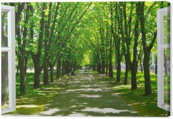 Leinwandbild Fenster geöffnet, um den schönen Park mit vielen grünen Bäumen