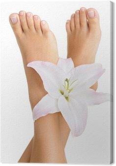 Leinwandbild Gesunde und elegante weibliche Füße