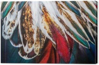 Leinwandbild Helle braune Feder Gruppe von einigen Vogel
