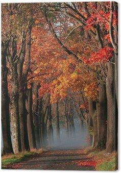 Leinwandbild Herbstgasse mit orange Blätter