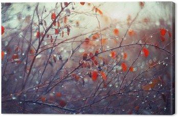 Leinwandbild Hintergrund mit Zweigen und Regentropfen