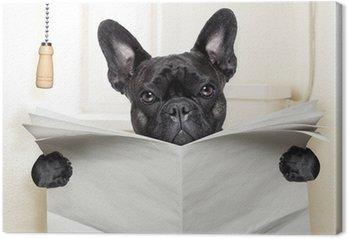 Leinwandbild Hundetoilette