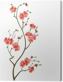 Leinwandbild Kirschblütenniederlassung abstrakten Hintergrund