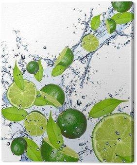 Leinwandbild Limes in Wasser fallen spritzen, isoliert auf weißem Hintergrund