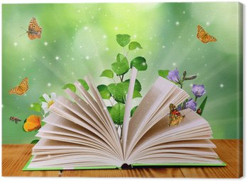 Leinwandbild Magisches Buch