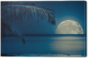Leinwandbild Mond spiegelt sich auf dem Wasser von einem tropischen Strand