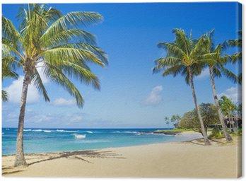 Leinwandbild Palmen an einem Sandstrand auf Hawaii