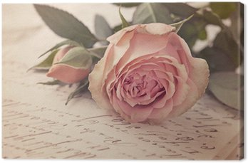 Leinwandbild Rosarote rosa