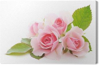 Leinwandbild Rosen rosa