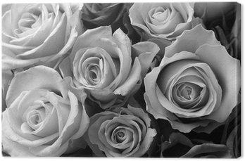 Leinwandbild Rosen