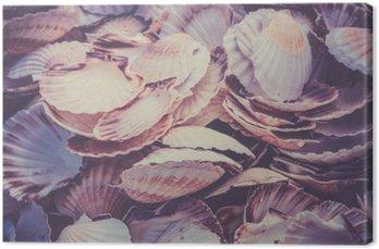 Leinwandbild Scallop Muscheln Haufen