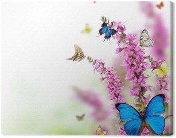 Leinwandbild Schöne Blume Hintergrund mit exotischen Schmetterlingen