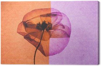 Leinwandbild Schöne Blumen