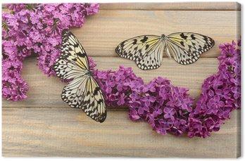 Leinwandbild Schöne Schmetterlinge und lila Blumen, auf Holzuntergrund