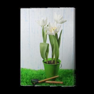 leinwandbild sch ne tulpen im dekorativen eimer auf farbe holz pixers wir leben um zu. Black Bedroom Furniture Sets. Home Design Ideas