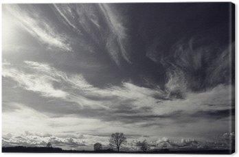 Leinwandbild Schwarz-Weiß-Foto der Herbstlandschaft