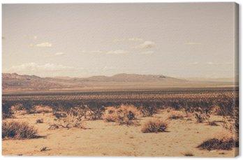 Leinwandbild Southern California-Wüste