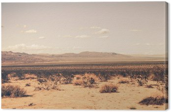 Leinwandbild Südliche Wüste in Kalifornien