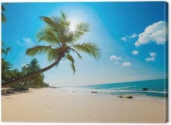 Leinwandbild Tropenstrand in der Sonne