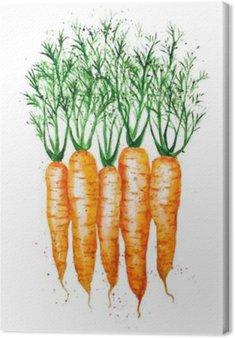 Leinwandbild Vektor Aquarell Karotten, isoliert auf weißem Hintergrund