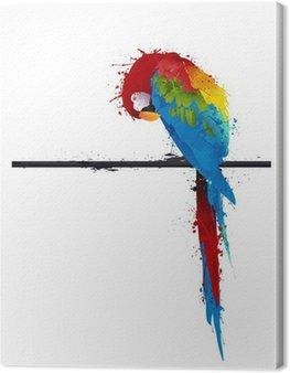 Leinwandbild Vektor-Papagei Sittich, Graffiti