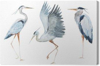 Leinwandbild Vögel Aquarell Reiher