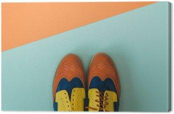 Leinwandbild Wohnung lag Mode eingestellt: farbige Vintage-Schuhe auf farbigem Hintergrund. Draufsicht.