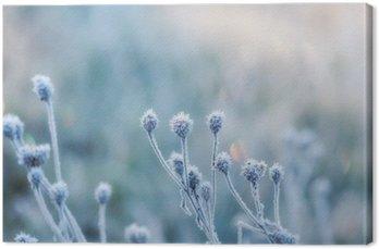 Leinwandbild Zusammenfassung natürlichen Hintergrund von gefrorenen Anlage mit Raureif oder Raureif
