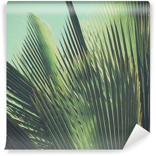 Mural de Parede Lavável Fundo do vintage tropical abstrato. Folhas de palmeira na luz solar.