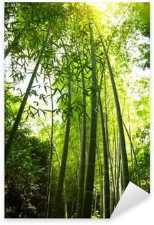 Naklejka Pixerstick Bambus lesie tła