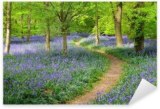 Naklejka Bluebell drewna