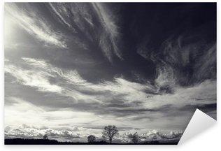 Naklejka Pixerstick Czarno-białe zdjęcie krajobrazu jesienią