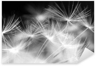 Naklejka Pixerstick Dandelion makro urody