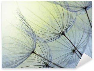 Naklejka Dandelion nasion
