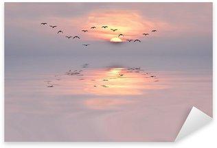Naklejka Dawn of delikatnych kolorach