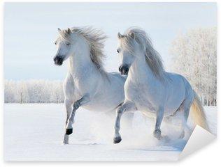 Naklejka Pixerstick Dwa białe konie galop na polu śnieg