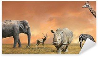 Naklejka Dziki gromadzenia zwierząt sawanny