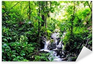 Naklejka Pixerstick Dżungla w Tentena