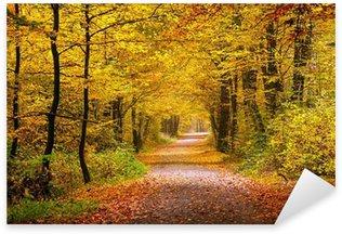 Naklejka Jesienny las