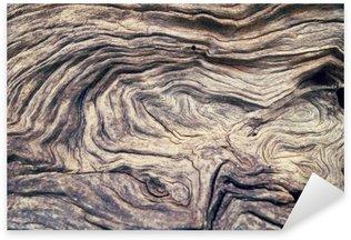 Naklejka Pixerstick Kora drzewa tekstury drewna