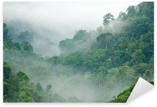 Naklejka Pixerstick Las deszczowy poranek mgła