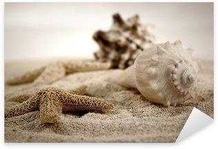 Naklejka Muszle na piasku