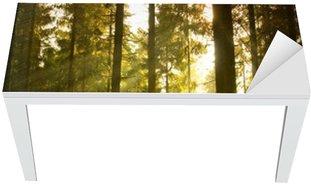 Naklejka na Biurko i Stół Piękny las