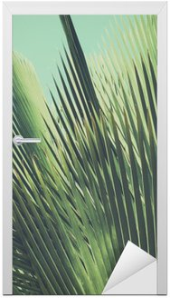 Naklejka na Drzwi Abstrakcyjna tropikalnych tła archiwalne. Liści palmowych w słońcu.