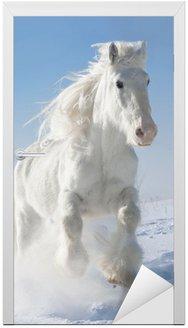 Biały koń biegnie galopem w zimie