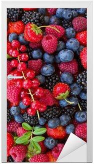 Naklejka na Drzwi Bluberry, maliny, jeżyny i czerwone currrunt