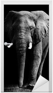 Naklejka na Drzwi Elephant samodzielnie na czarnym tle